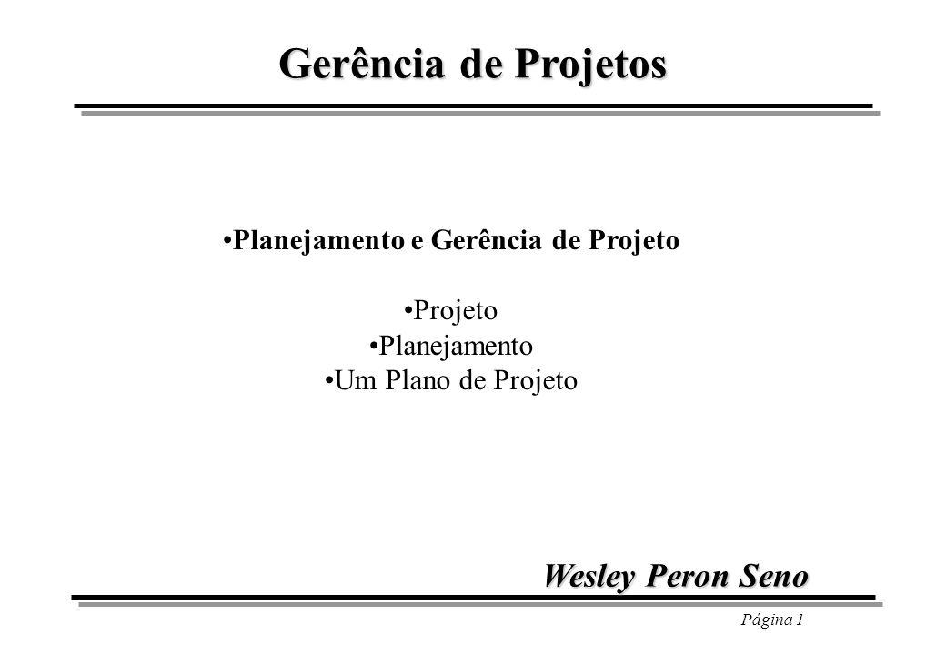 Página 1 Gerência de Projetos Planejamento e Gerência de Projeto Projeto Planejamento Um Plano de Projeto Wesley Peron Seno
