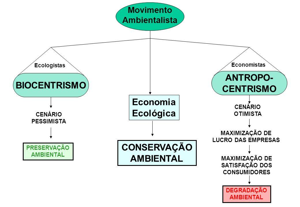 BIOCENTRISMO Movimento Ambientalista ANTROPO- CENTRISMO Ecologistas Economistas Economia Ecológica CONSERVAÇÃO AMBIENTAL CENÁRIO PESSIMISTA PRESERVAÇÃ