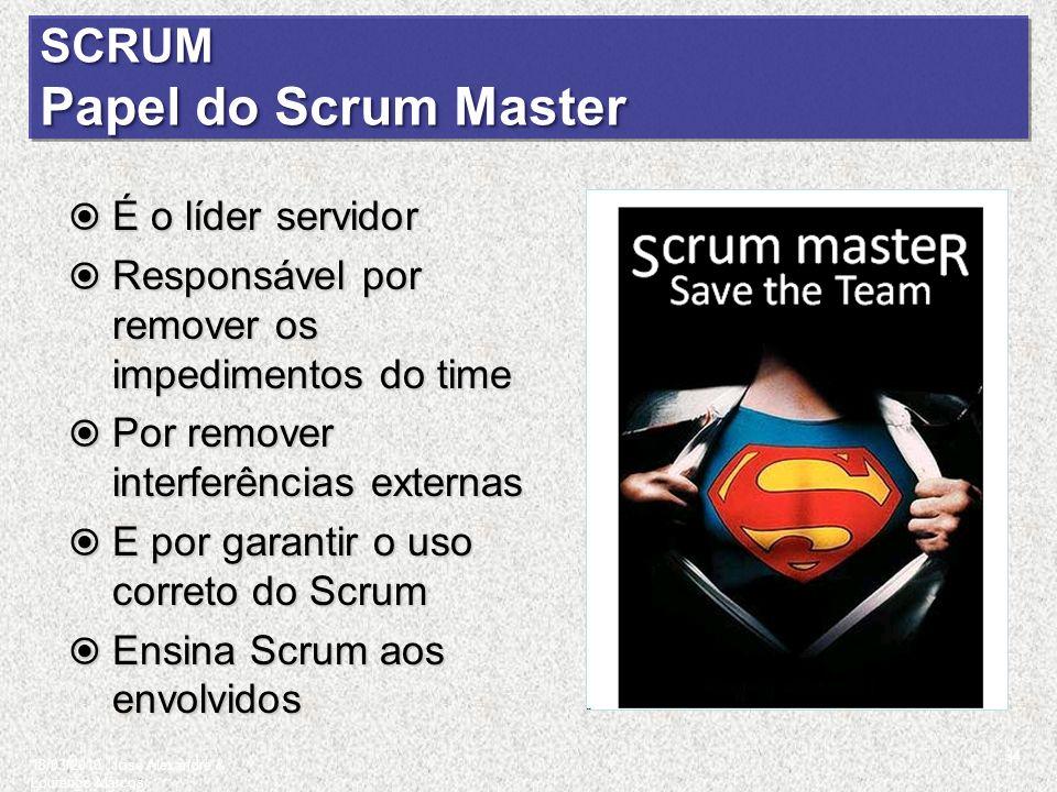 SCRUM Papel do Scrum Master É o líder servidor É o líder servidor Responsável por remover os impedimentos do time Responsável por remover os impedimen