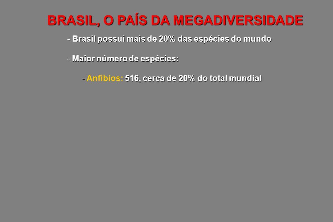 - Brasil possui mais de 20% das espécies do mundo - Maior número de espécies: - 516, cerca de 20% do total mundial - Anfíbios: 516, cerca de 20% do to