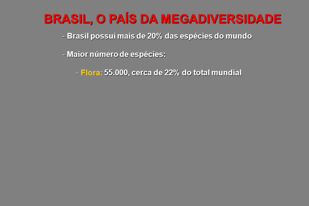 - Brasil possui mais de 20% das espécies do mundo - Maior número de espécies: - 55.000, cerca de 22% do total mundial - Flora: 55.000, cerca de 22% do