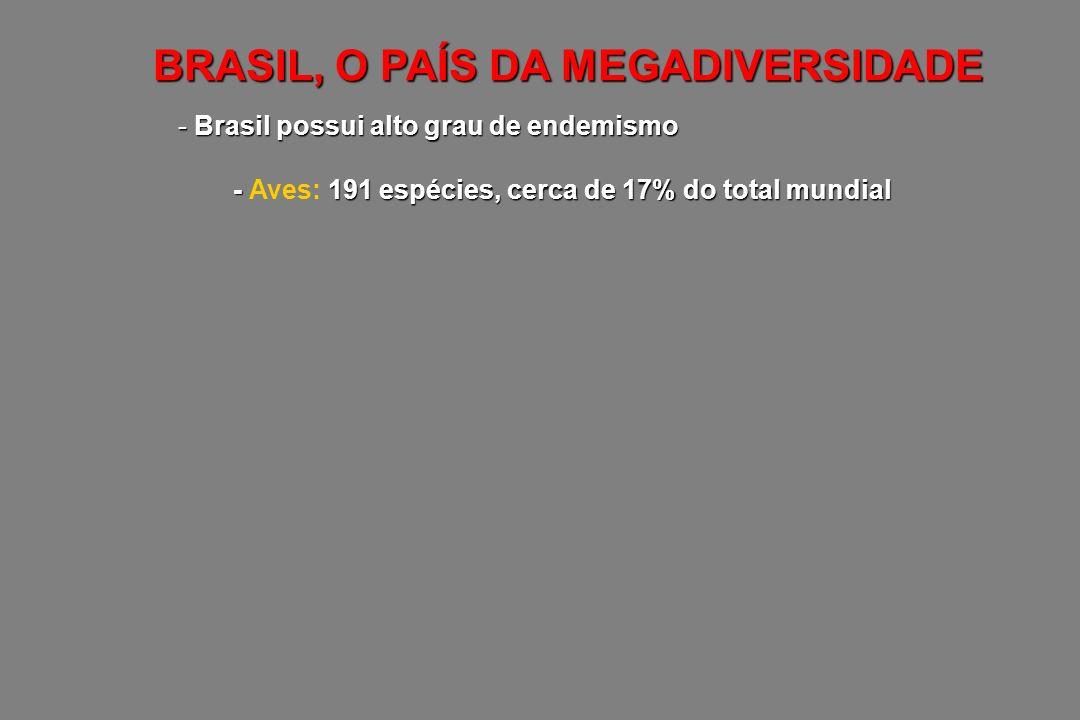 BRASIL, O PAÍS DA MEGADIVERSIDADE - Brasil possui alto grau de endemismo - 191 espécies, cerca de 17% do total mundial - Aves: 191 espécies, cerca de