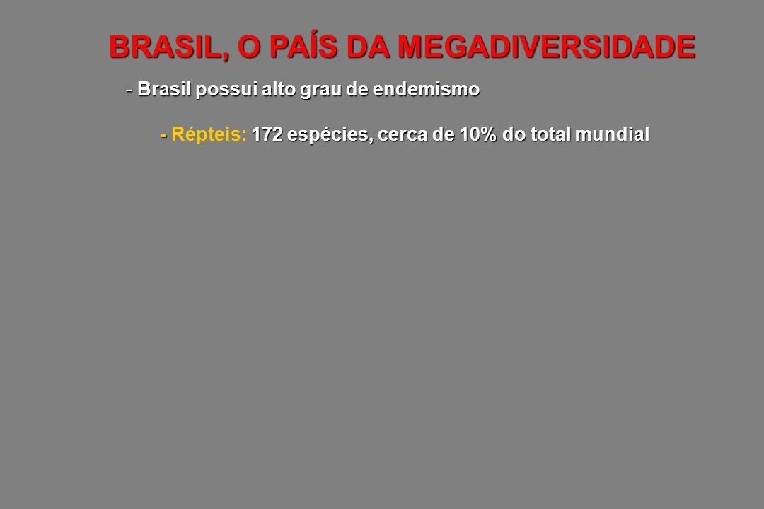 BRASIL, O PAÍS DA MEGADIVERSIDADE - Brasil possui alto grau de endemismo - 172 espécies, cerca de 10% do total mundial - Répteis: 172 espécies, cerca