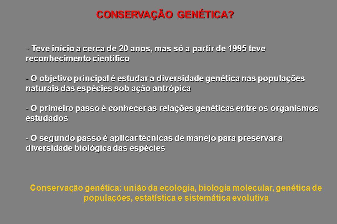 CONSERVAÇÃO GENÉTICA? - Teve início a cerca de 20 anos, mas só a partir de 1995 teve reconhecimento científico - O objetivo principal é estudar a dive