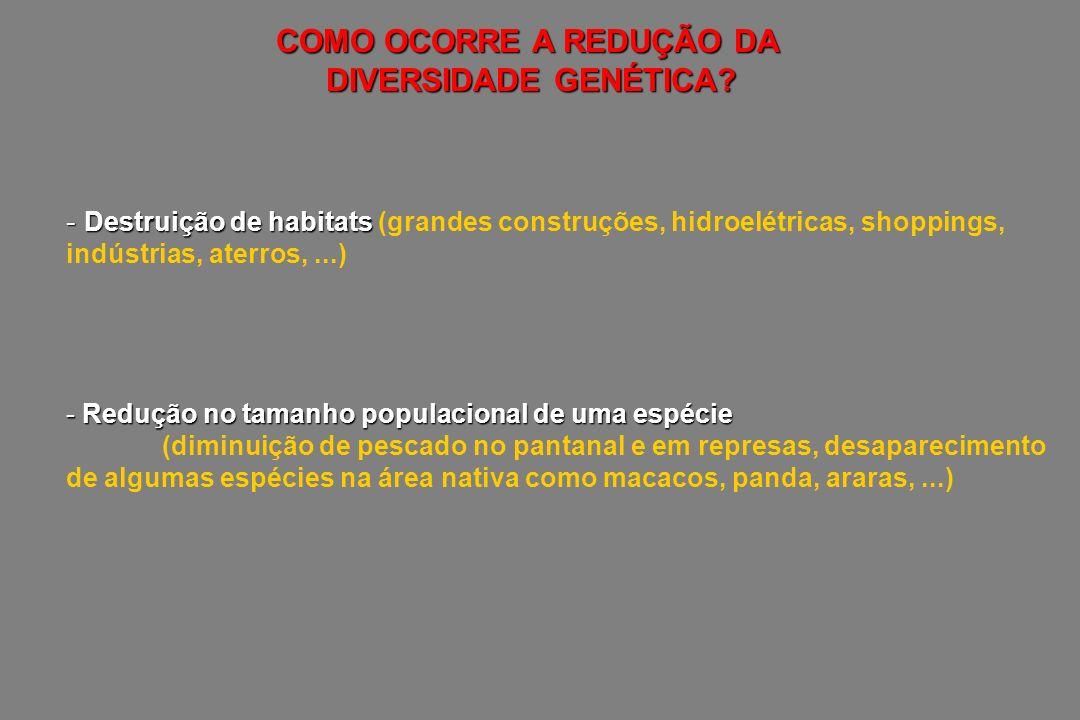 - Destruição de habitats - Destruição de habitats (grandes construções, hidroelétricas, shoppings, indústrias, aterros,...) - Redução no tamanho popul