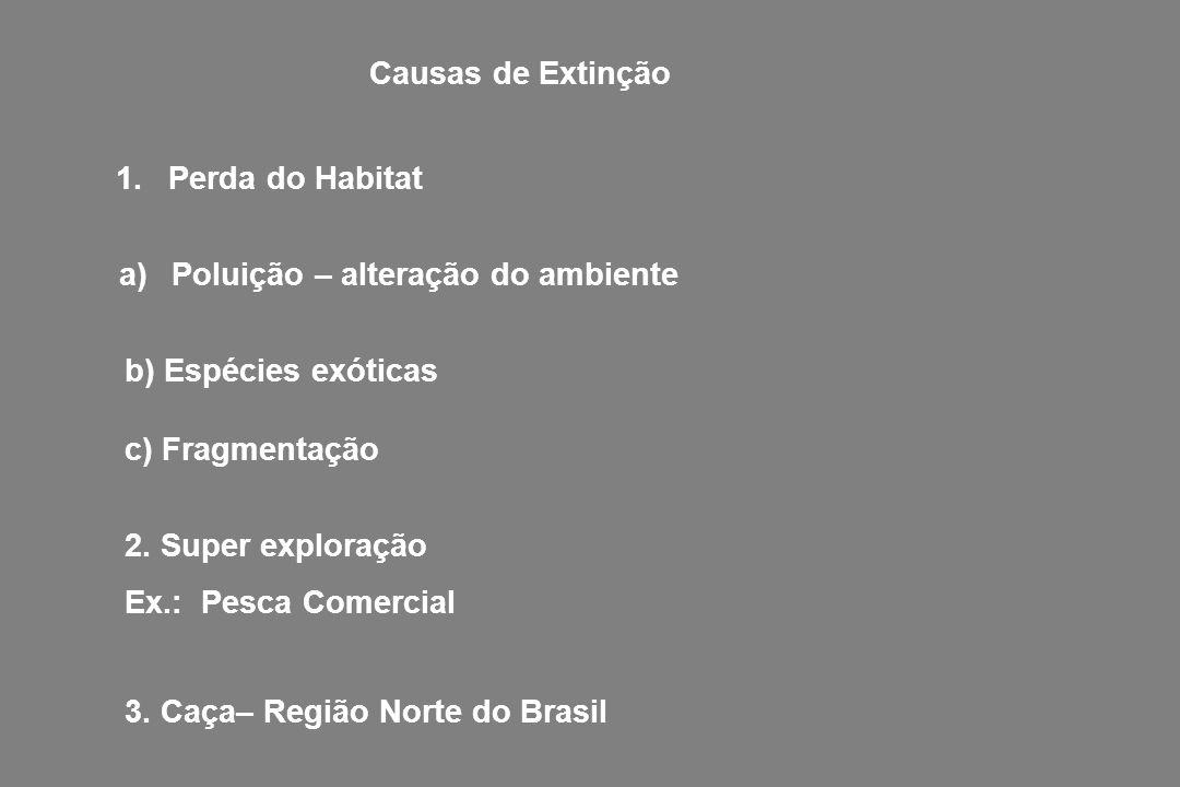 - Destruição de habitats - Destruição de habitats (grandes construções, hidroelétricas, shoppings, indústrias, aterros,...) - Redução no tamanho populacional de uma espécie (diminuição de pescado no pantanal e em represas, desaparecimento de algumas espécies na área nativa como macacos, panda, araras,...) COMO OCORRE A REDUÇÃO DA DIVERSIDADE GENÉTICA?