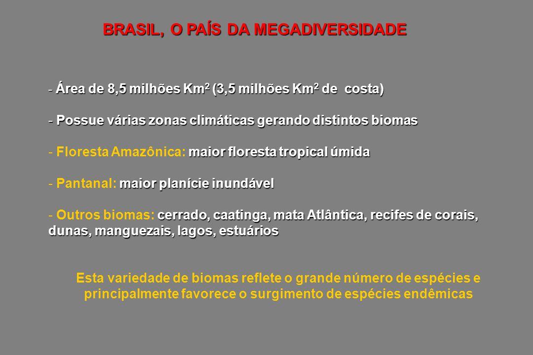 BRASIL, O PAÍS DA MEGADIVERSIDADE - Área de 8,5 milhões Km 2 (3,5 milhões Km 2 de costa) - Possue várias zonas climáticas gerando distintos biomas mai