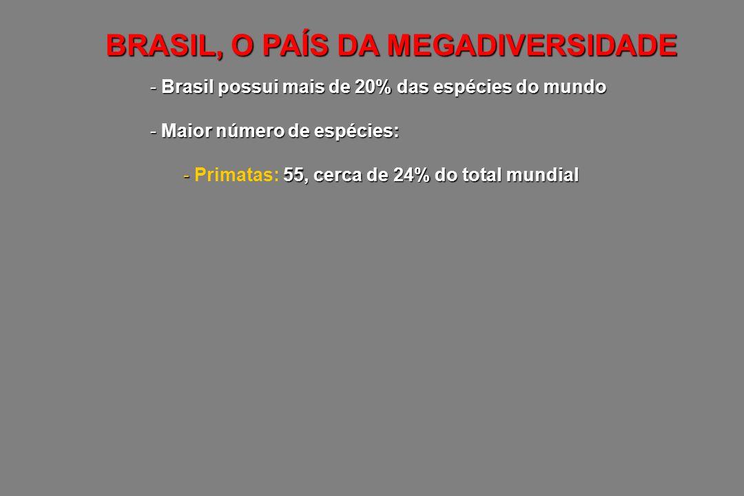- Brasil possui mais de 20% das espécies do mundo - Maior número de espécies: - 516, cerca de 20% do total mundial - Anfíbios: 516, cerca de 20% do total mundial BRASIL, O PAÍS DA MEGADIVERSIDADE