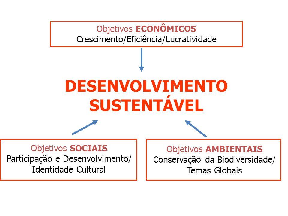 IMPORTÂNCIA DA AIA Instrumento de planejamento, objetivando a prevenção do dano ambiental; Instrumento de apoio à decisão no processo de licenciamento; Instrumento de ajuda à concepção de projetos, introduzindo o critério ambiental ao lado dos critérios técnicos e sócio- econômicos; Instrumento de gestão ambiental através da atenuação dos impactos negativos e valorização dos impactos positivos; Instrumento de negociação social, utilizando-se especialmente a mediação como forma de solucionar conflitos visando a adoção de medidas mitigadoras e compensatórias.