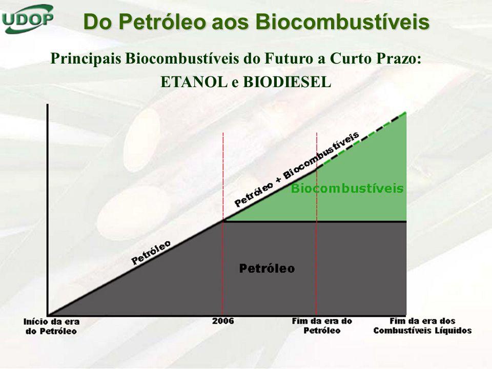 Do Petróleo aos Biocombustíveis Principais Biocombustíveis do Futuro a Curto Prazo: ETANOL e BIODIESEL