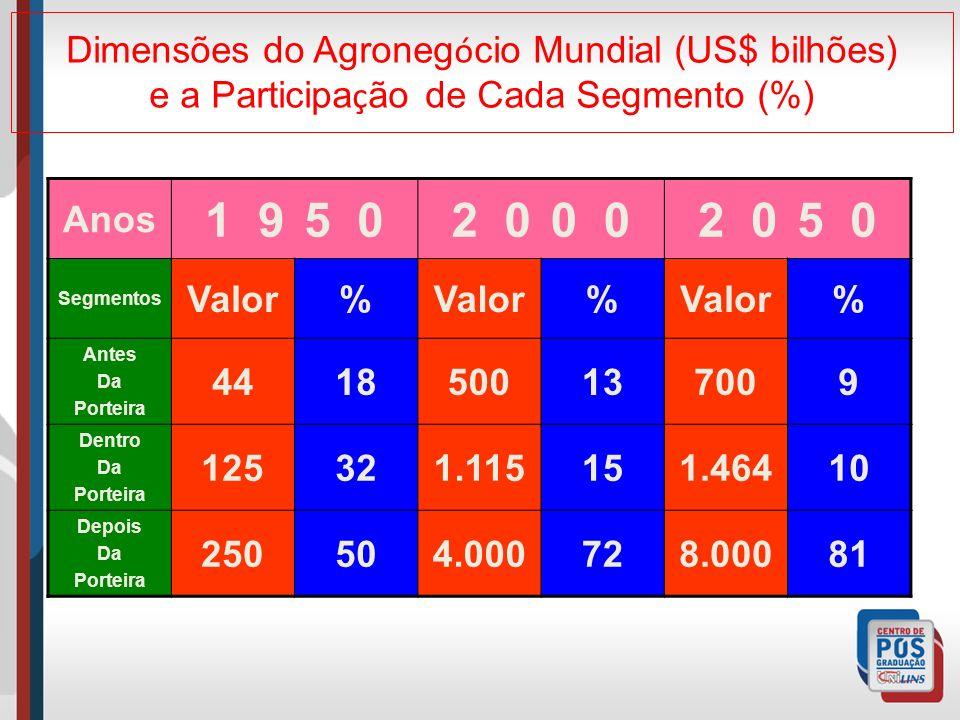 Dimensões do Agroneg ó cio Mundial (US$ bilhões) e a Participa ç ão de Cada Segmento (%) Anos 1 95 02 00 2 05 0 Segmentos Valor% % % Antes Da Porteira