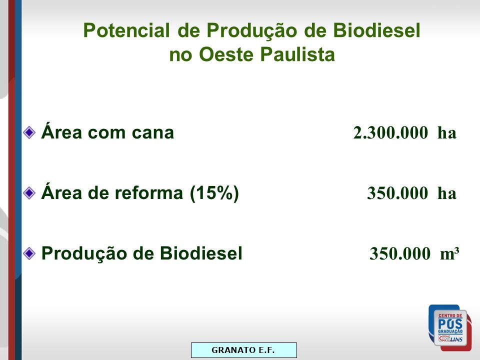 Potencial de Produção de Biodiesel no Oeste Paulista Área com cana 2.300.000 ha Área de reforma (15%) 350.000 ha Produção de Biodiesel 350.000 m³ GRAN