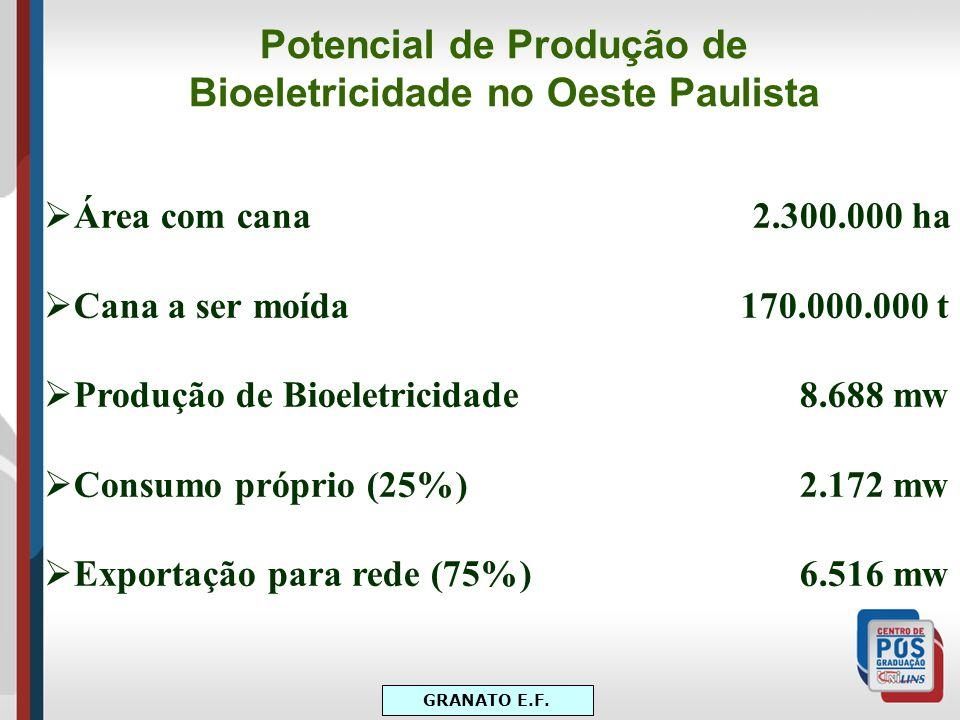 Potencial de Produção de Bioeletricidade no Oeste Paulista Área com cana 2.300.000 ha Cana a ser moída 170.000.000 t Produção de Bioeletricidade 8.688