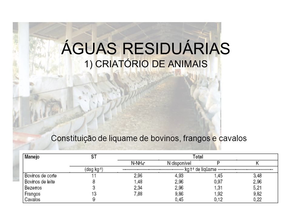 ÁGUAS RESIDUÁRIAS 1) CRIATÓRIO DE ANIMAIS Constituição de liquame de bovinos, frangos e cavalos