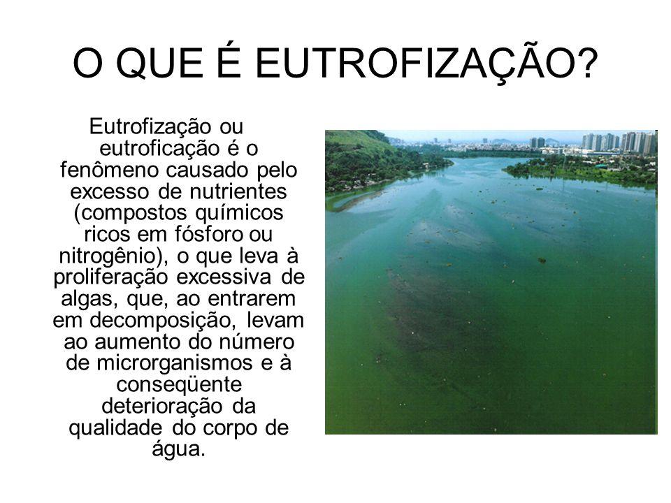O QUE É EUTROFIZAÇÃO? Eutrofização ou eutroficação é o fenômeno causado pelo excesso de nutrientes (compostos químicos ricos em fósforo ou nitrogênio)