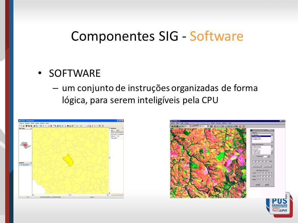 Componentes SIG - Software SOFTWARE – um conjunto de instruções organizadas de forma lógica, para serem inteligíveis pela CPU