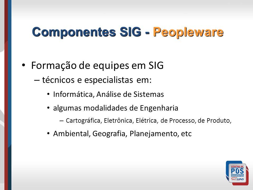 Formação de equipes em SIG – técnicos e especialistas em: Informática, Análise de Sistemas algumas modalidades de Engenharia – Cartográfica, Eletrônic