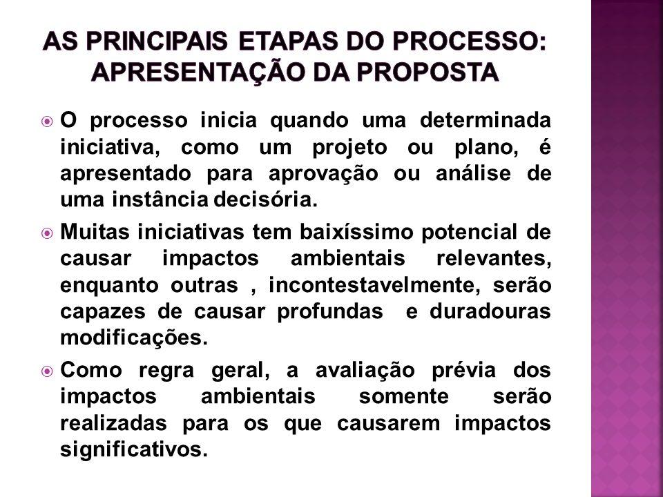 O processo inicia quando uma determinada iniciativa, como um projeto ou plano, é apresentado para aprovação ou análise de uma instância decisória. Mui