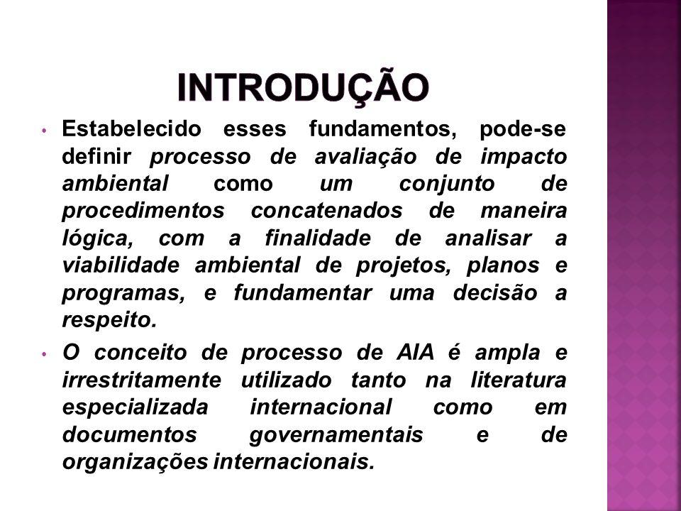 Pode-se dividir o processo da AIA em 3 etapas, cada uma delas agrupando diferentes atividades: 1.