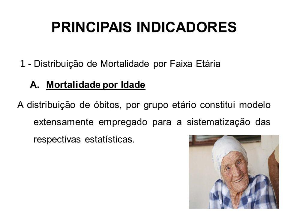 PRINCIPAIS INDICADORES 1 - Distribuição de Mortalidade por Faixa Etária A.Mortalidade por Idade A distribuição de óbitos, por grupo etário constitui m
