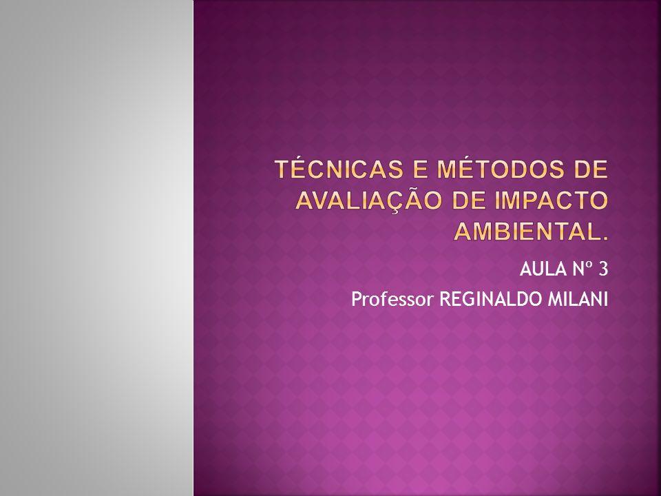 AULA Nº 3 Professor REGINALDO MILANI