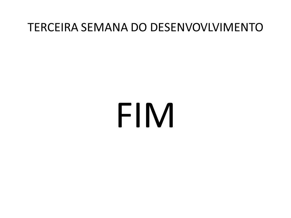 FIM TERCEIRA SEMANA DO DESENVOVLVIMENTO
