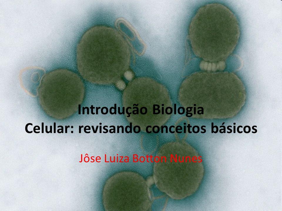 Introdução Biologia Celular: revisando conceitos básicos Jôse Luiza Botton Nunes