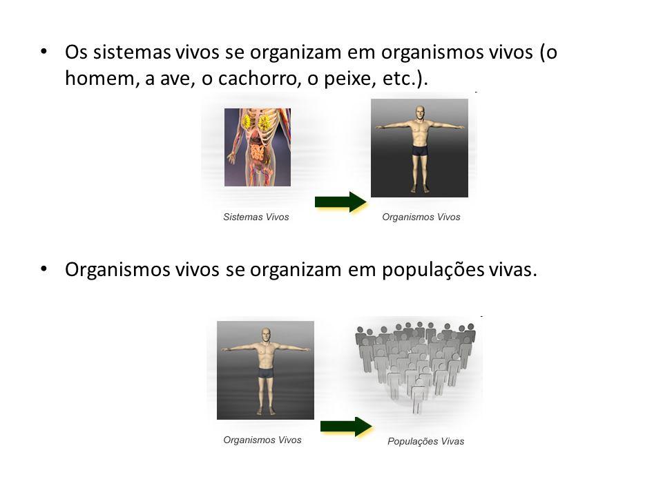 Os sistemas vivos se organizam em organismos vivos (o homem, a ave, o cachorro, o peixe, etc.). Organismos vivos se organizam em populações vivas.