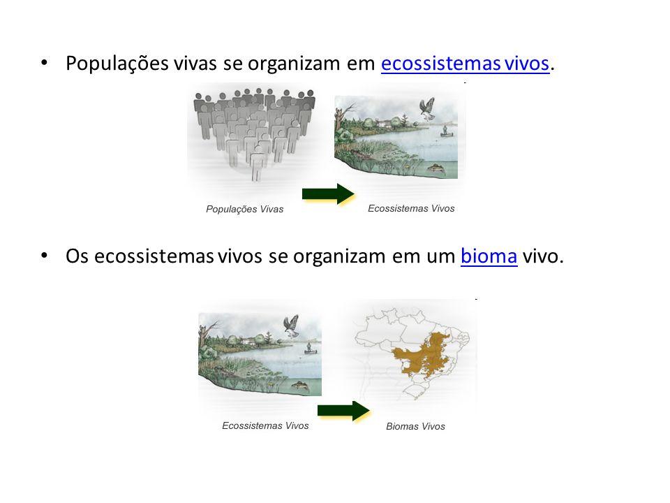 Populações vivas se organizam em ecossistemas vivos.ecossistemas vivos Os ecossistemas vivos se organizam em um bioma vivo.bioma