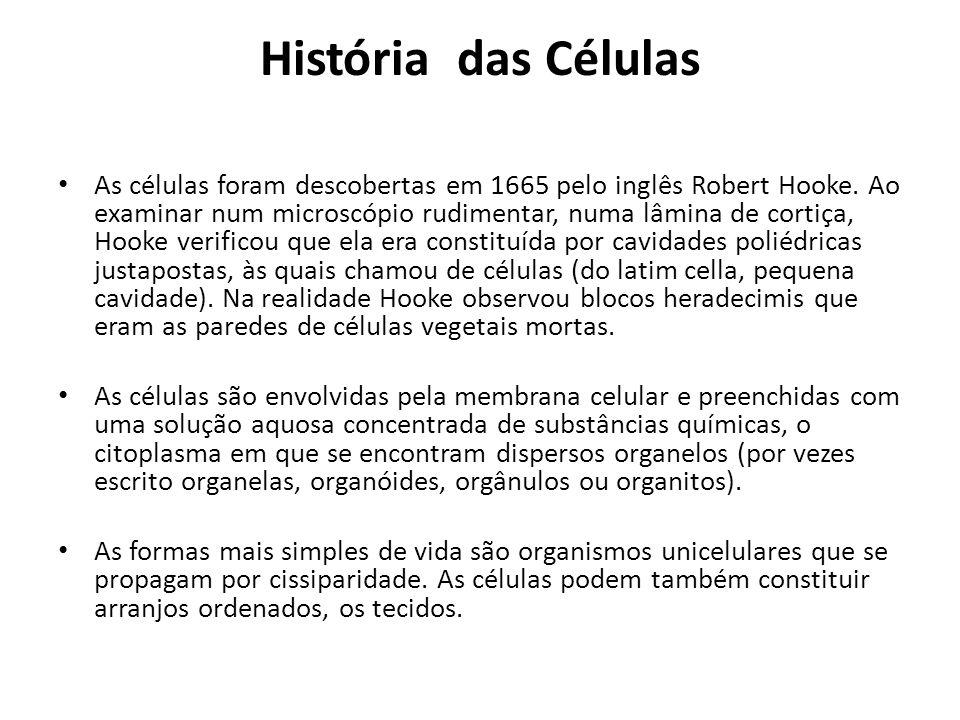 História das Células As células foram descobertas em 1665 pelo inglês Robert Hooke. Ao examinar num microscópio rudimentar, numa lâmina de cortiça, Ho