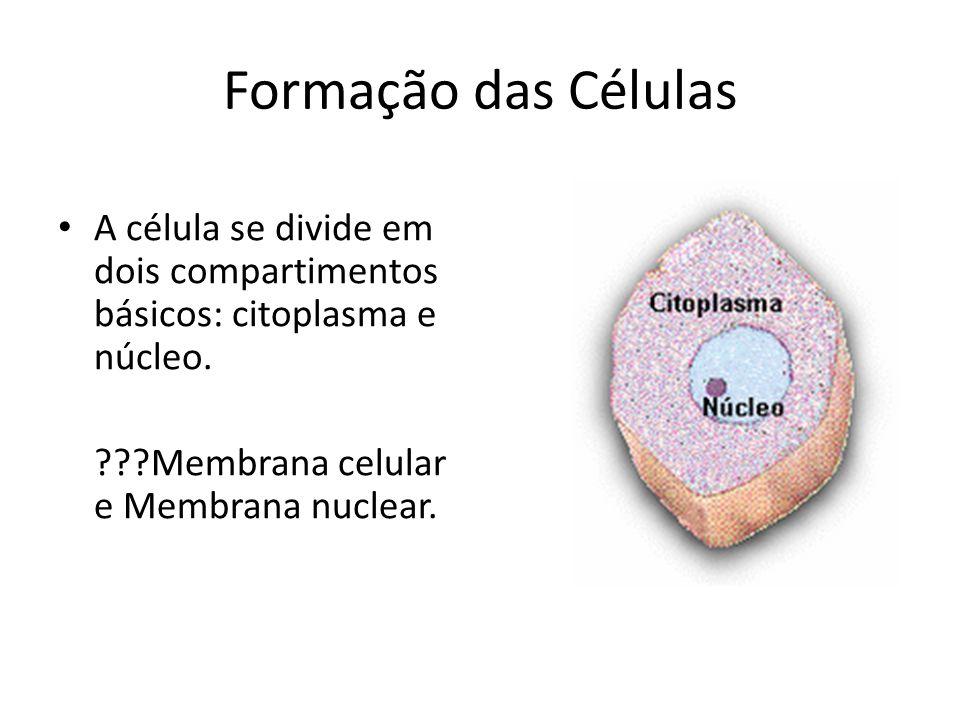 Formação das Células A célula se divide em dois compartimentos básicos: citoplasma e núcleo. ???Membrana celular e Membrana nuclear.