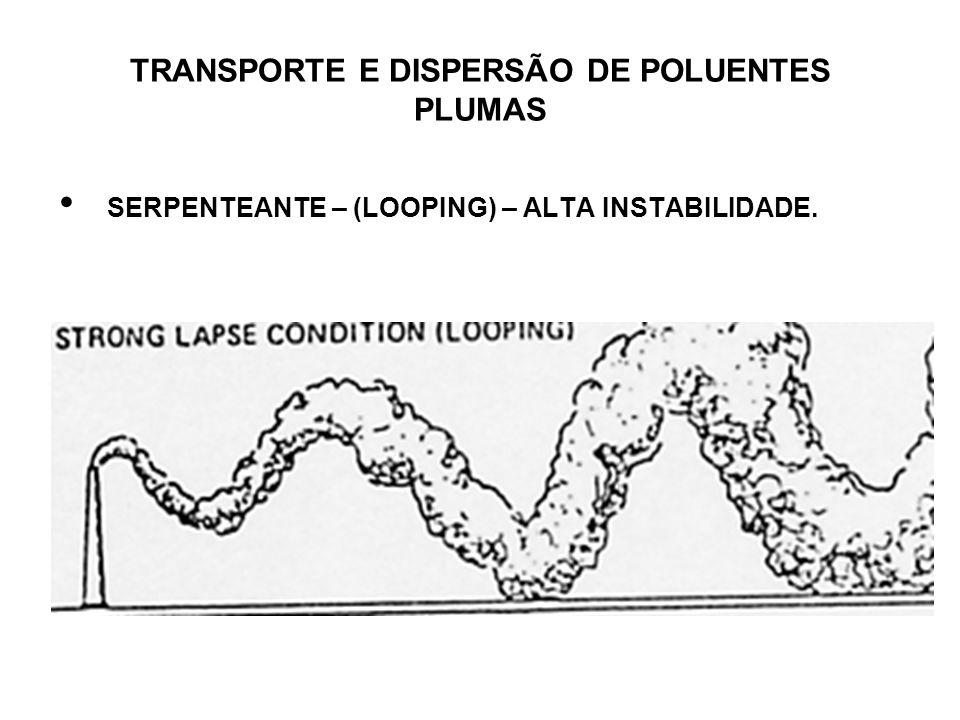 TRANSPORTE E DISPERSÃO DE POLUENTES PLUMAS SERPENTEANTE – (LOOPING) – ALTA INSTABILIDADE.