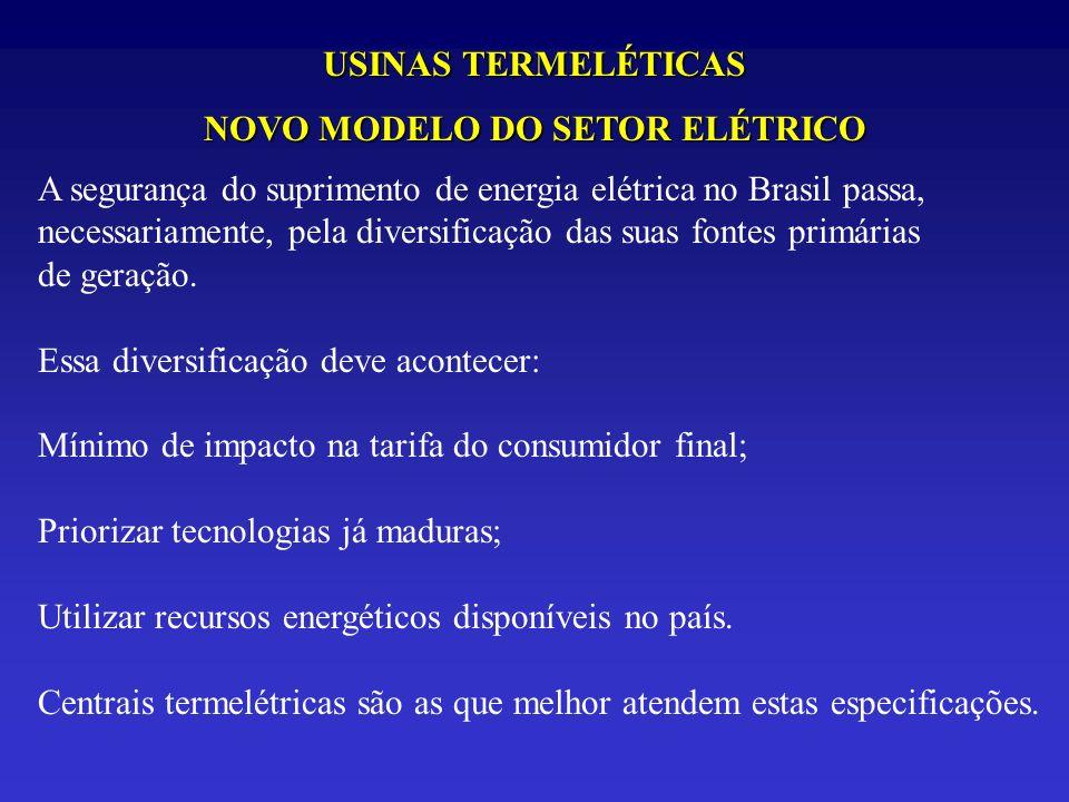 USINAS TERMELÉTICAS NOVO MODELO DO SETOR ELÉTRICO A segurança do suprimento de energia elétrica no Brasil passa, necessariamente, pela diversificação