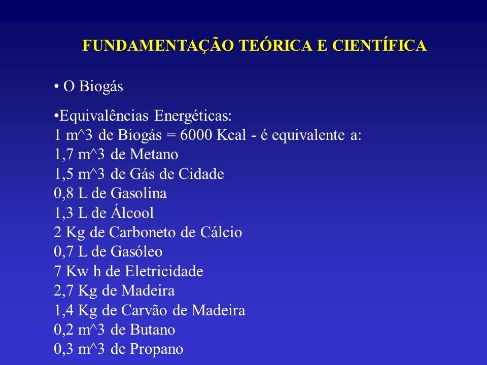 O Biogás Equivalências Energéticas: 1 m^3 de Biogás = 6000 Kcal - é equivalente a: 1,7 m^3 de Metano 1,5 m^3 de Gás de Cidade 0,8 L de Gasolina 1,3 L