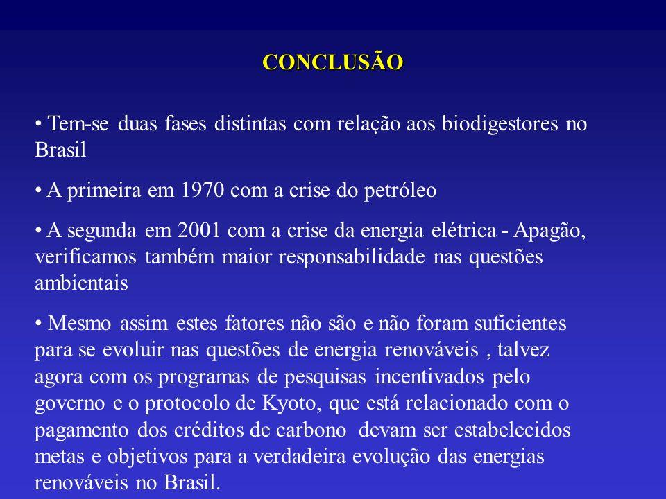 CONCLUSÃO Tem-se duas fases distintas com relação aos biodigestores no Brasil A primeira em 1970 com a crise do petróleo A segunda em 2001 com a crise