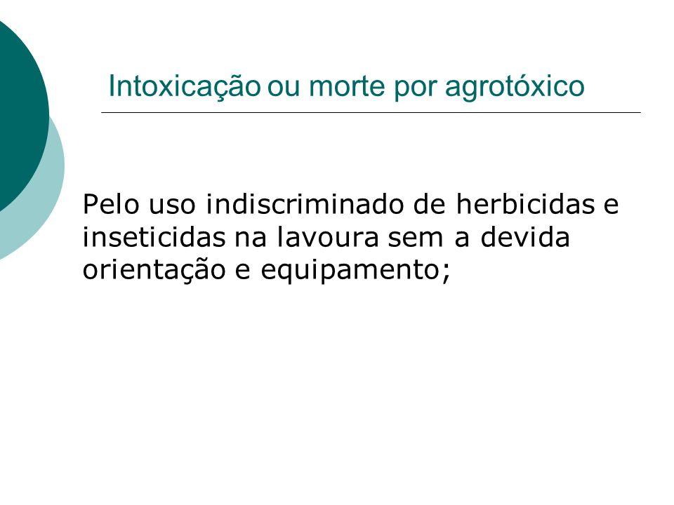 Intoxicação ou morte por agrotóxico Pelo uso indiscriminado de herbicidas e inseticidas na lavoura sem a devida orientação e equipamento;