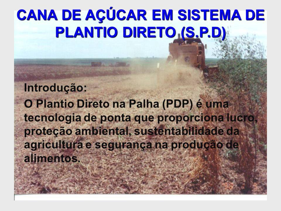 CANA DE AÇÚCAR EM SISTEMA DE PLANTIO DIRETO (S.P.D) Introdução: O Plantio Direto na Palha (PDP) é uma tecnologia de ponta que proporciona lucro, prote