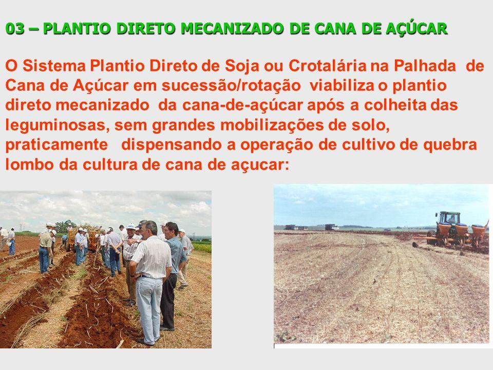 03 – PLANTIO DIRETO MECANIZADO DE CANA DE AÇÚCAR O Sistema Plantio Direto de Soja ou Crotalária na Palhada de Cana de Açúcar em sucessão/rotação viabi