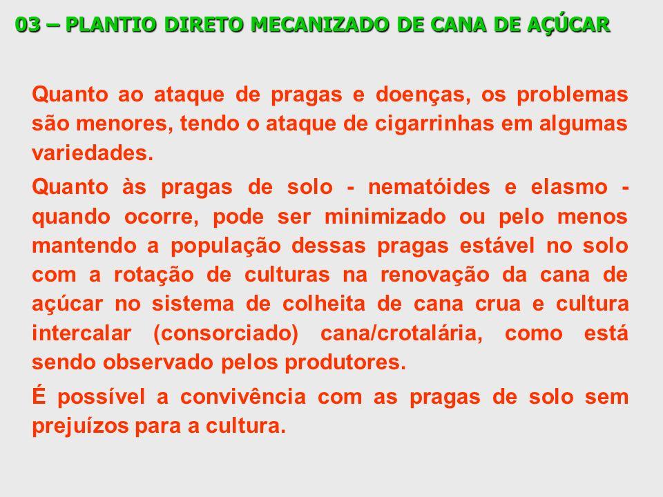 03 – PLANTIO DIRETO MECANIZADO DE CANA DE AÇÚCAR Quanto ao ataque de pragas e doenças, os problemas são menores, tendo o ataque de cigarrinhas em algu