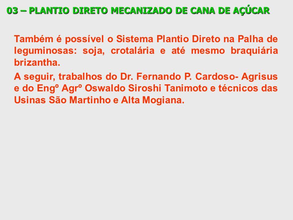 03 – PLANTIO DIRETO MECANIZADO DE CANA DE AÇÚCAR Também é possível o Sistema Plantio Direto na Palha de leguminosas: soja, crotalária e até mesmo braq