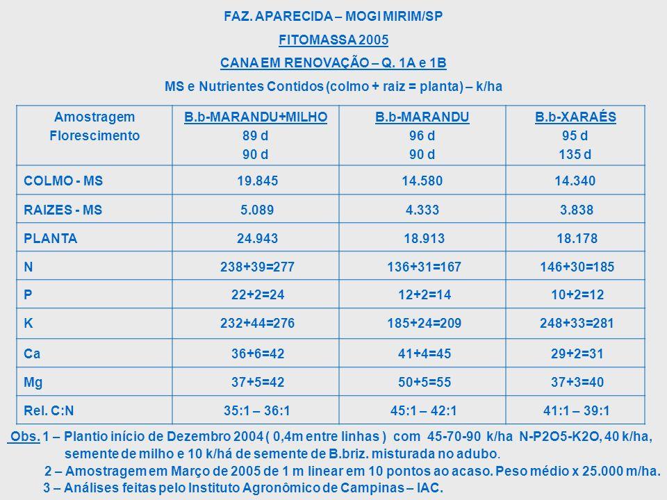 FAZ. APARECIDA – MOGI MIRIM/SP FITOMASSA 2005 CANA EM RENOVAÇÃO – Q. 1A e 1B MS e Nutrientes Contidos (colmo + raiz = planta) – k/ha Obs. 1 – Plantio