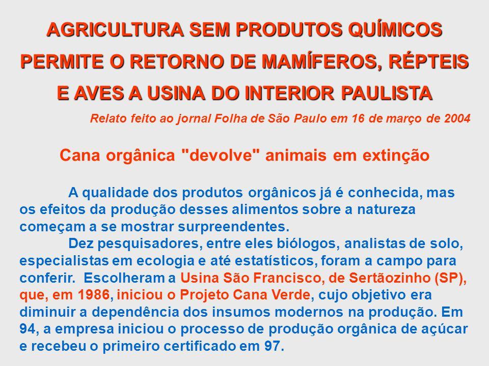 AGRICULTURA SEM PRODUTOS QUÍMICOS PERMITE O RETORNO DE MAMÍFEROS, RÉPTEIS E AVES A USINA DO INTERIOR PAULISTA Relato feito ao jornal Folha de São Paul