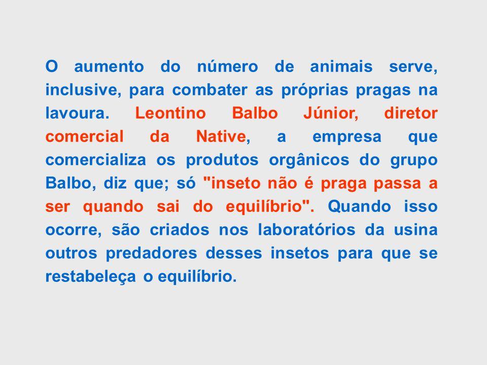 O aumento do número de animais serve, inclusive, para combater as próprias pragas na lavoura. Leontino Balbo Júnior, diretor comercial da Native, a em