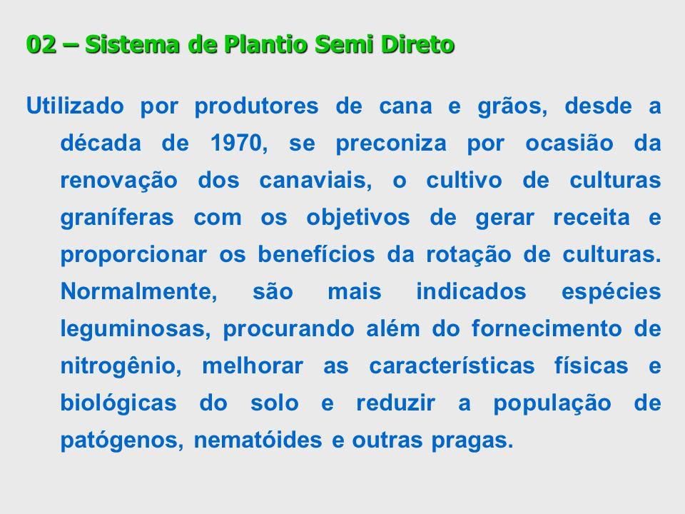03 – PLANTIO DIRETO MECANIZADO DE CANA DE AÇÚCAR Quanto ao ataque de pragas e doenças, os problemas são menores, tendo o ataque de cigarrinhas em algumas variedades.
