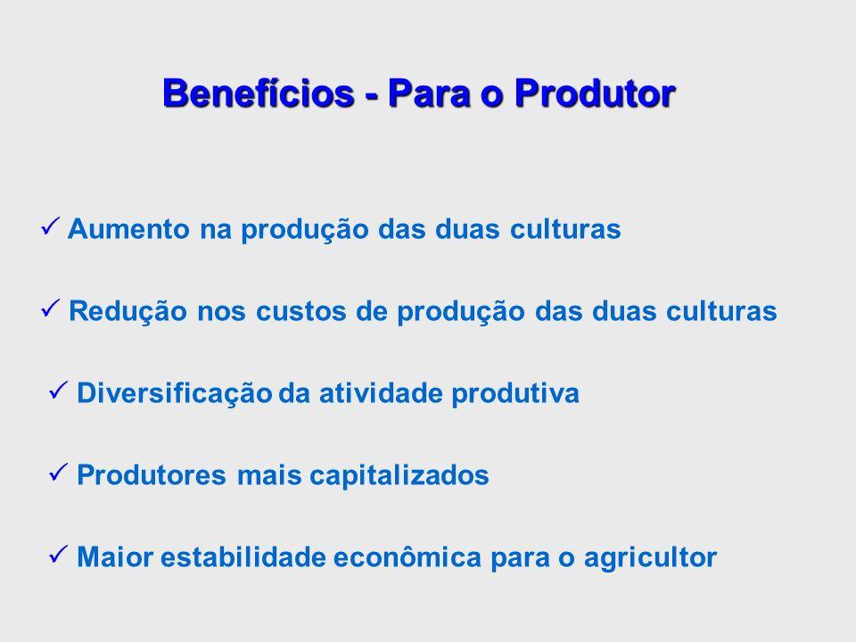 Aumento na produção das duas culturas Redução nos custos de produção das duas culturas Diversificação da atividade produtiva Produtores mais capitaliz