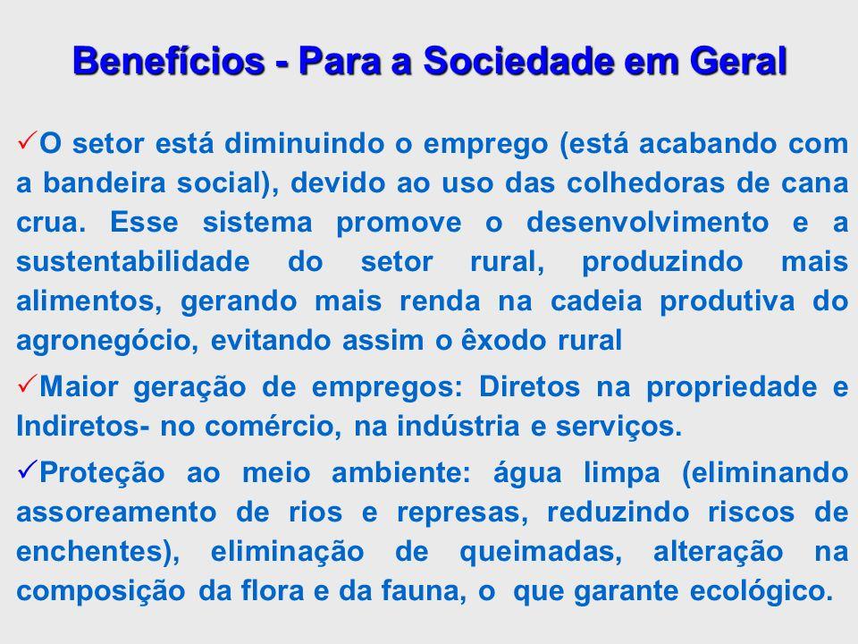 Benefícios - Para a Sociedade em Geral O setor está diminuindo o emprego (está acabando com a bandeira social), devido ao uso das colhedoras de cana c