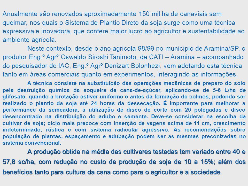 02 – Sistema de Plantio Semi Direto Redução no Custo de Formação do Canavial Redução no Custo de Formação do Canavial A receita da produção de soja, amendoim, feijão e girassol, até na safra de 2003/2004, tem ajudado economicamente nas despesas de mão-de-obra e óleo diesel no plantio da nova cultura e com acrécimos na produtividade de cana de açúcar de 4% até 22%, dependendo da leguminosa em rotação.