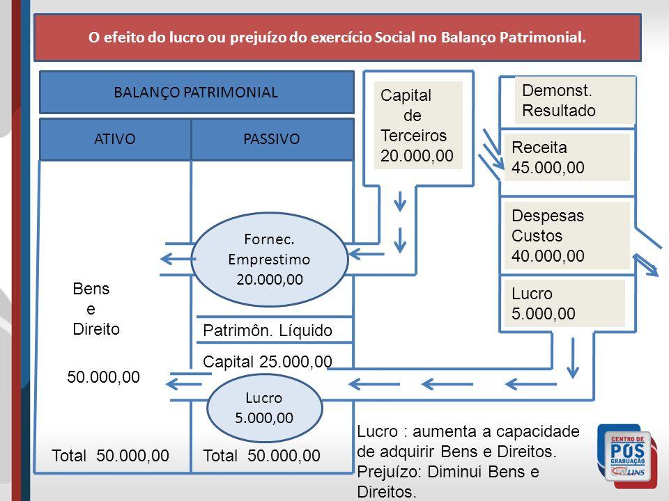 O efeito do lucro ou prejuízo do exercício Social no Balanço Patrimonial.