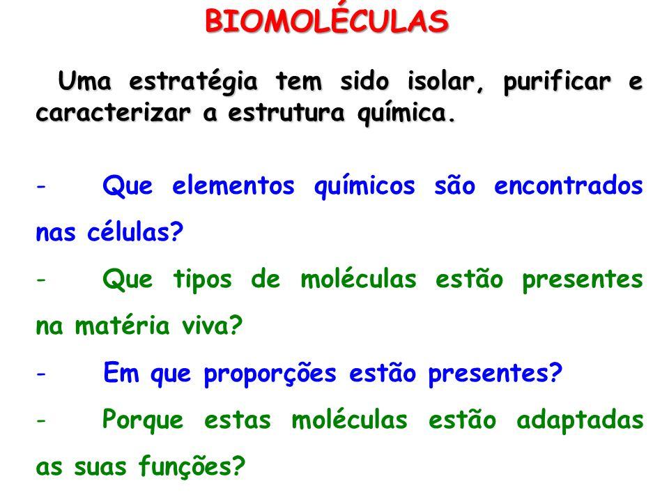 BIOMOLÉCULAS Uma estratégia tem sido isolar, purificar e caracterizar a estrutura química. - Que elementos químicos são encontrados nas células? - Que
