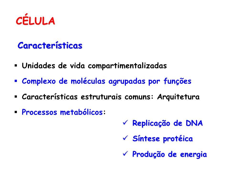 CÉLULA Características Unidades de vida compartimentalizadas Complexo de moléculas agrupadas por funções Características estruturais comuns: Arquitetu